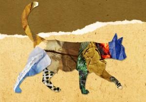 cat_collage_